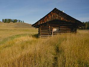 Cariboo Waggon Project