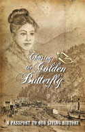 Chasing The Golden Butterfly